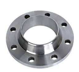 China SS310 , 904L Stainless Steel Flanges , Industry Forging SS Pipe Flange Black painting supplier